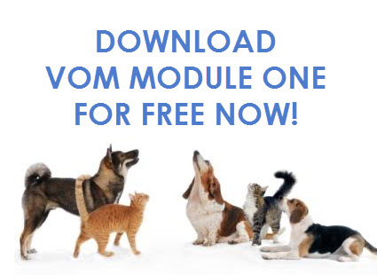 Download VOM Module One For Free!